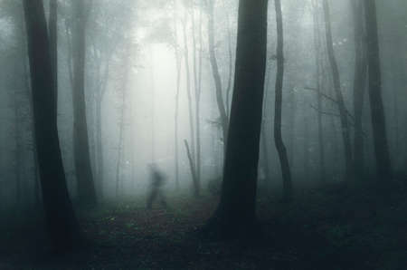Ghost walking in dark mysterious haunted forest with fog
