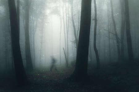 Ghost caminar en el bosque embrujado misterioso oscuro con niebla Foto de archivo
