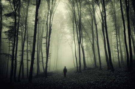 Man in surreal forest with fog on Halloween