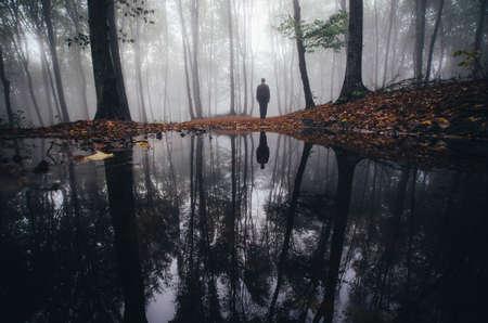 Człowiek w pobliżu jeziora w nawiedzonym lesie z mgły