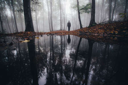 Man near lake in haunted forest with fog
