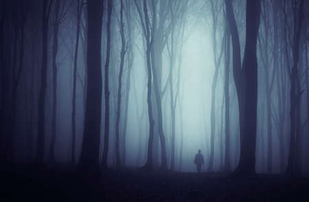 eerie: Man in mysterious forest with fog on Halloween night