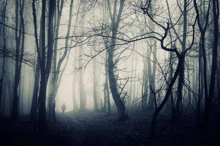 Silhouet van de mens in donkere achtervolgd geheimzinnig bos met mist op Halloween op de weg