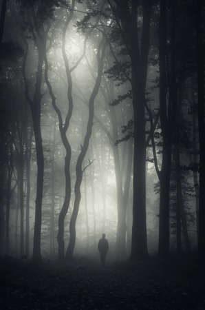 mystery woods: Vertical photo of silhouette of man in dark haunted forest with fog