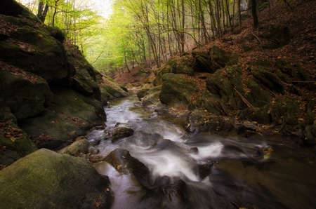 autumn forest: Mountain river with rapids in autumn forest