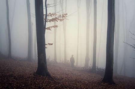 Mysteus ファンタジー秋の森の霧と男のシルエット 写真素材