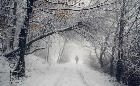 Man on winter forest path Stock Photo