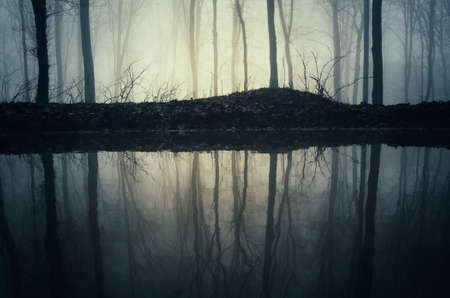 Lake reflection in mysterious dark haunted forest with fog on Halloween