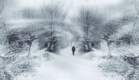 Man caught in winter storm with blizzard and snow Stock fotó