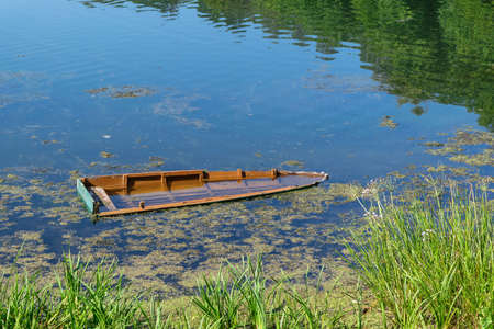 Sunken wooden boat on the river or lake near the shore. In the reflection of the water you could see trees. On the water small ripples. Near the shore grow reeds and floating algae and duckweed. Stock Photo