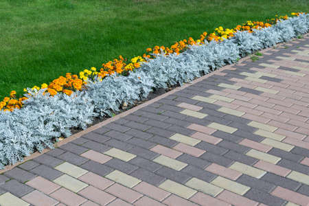 Paving pattern with rectangular shape and brown color. Along paved walkways planted flowerbed with beautiful orange and yellow flowers. In the background, lawn with green grass.