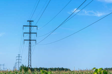 A number of high voltage poles leaving into the distance with high voltage wires. In the foreground a field of corn. In the background a blue sky with clouds. Electricity, high voltage.