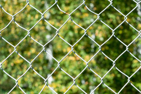 In the foreground grille mesh netting. In the background a blurry image of the leaves of trees. The fence prevents passage in a closed area or private property. The restriction of freedom of movement. Stock Photo