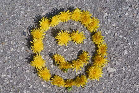 Smiley sign with eyes and smiling mouth, lined with heads of yellow dandelions lying on the rocky pavement. Bright Sunny, warm day. The sun shines. Summer holidays in a cheerful mood. Background.