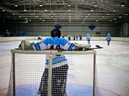 Goalkeeper hockey player standing at the gate