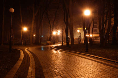 and streetlights: path in the night park  Stock Photo