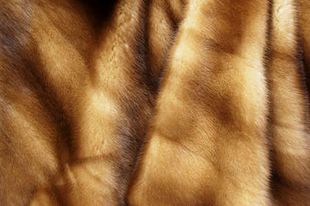 mink fur photo