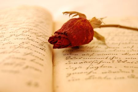 Dried red rose on an open old book romantically lit Stock Photo - 2530502