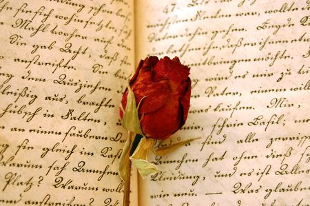 Dried red rose on an open old book Stock Photo - 2530507