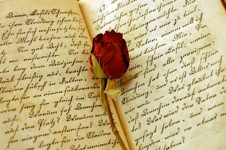 Dried red rose on an open old book Stock Photo - 2530510