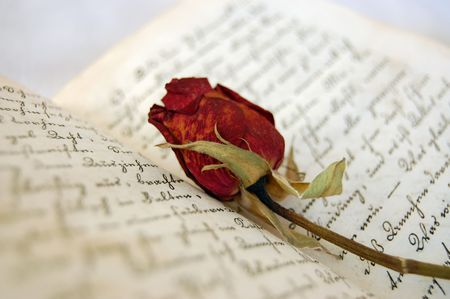 Dried red rose on an open old book Stock Photo