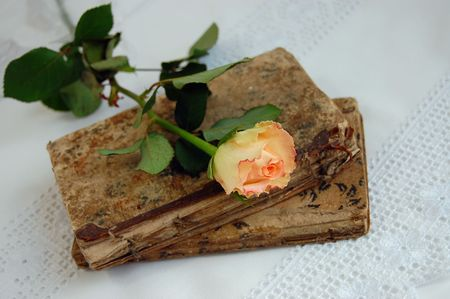 and worn out: Delicate rose on two worn out old books