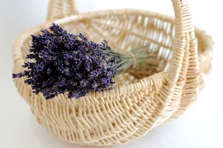 A bouquet of dry lavender in a wicker basket on a white background photo