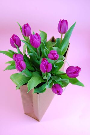 Gift bag full of purple tulips on a pink background