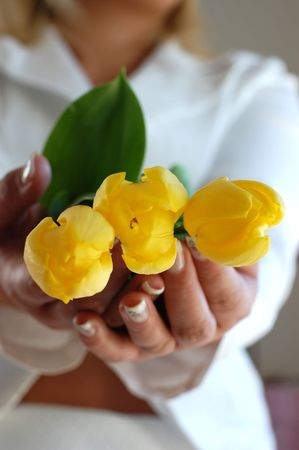 Young woman in dressed in white holding tree vibrant yellow tulips photo