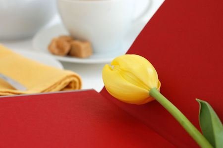 Yellow tulip on an open red book with tea setting in the background photo