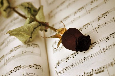 Dried red rose on a music sheet photo