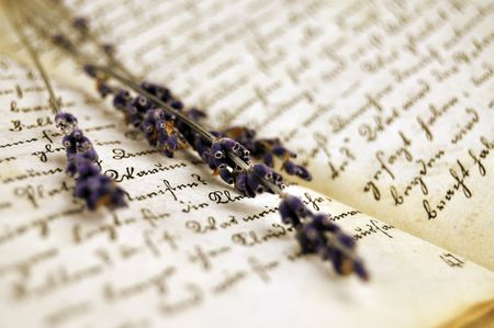 Dry lavender on an old book closeup