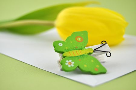 White envelope with a wooden butterfly clip and a yellow tulip photo