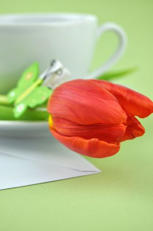 Red tulip decorated with a wooden butterfly and a cup of tea on a white envelope photo
