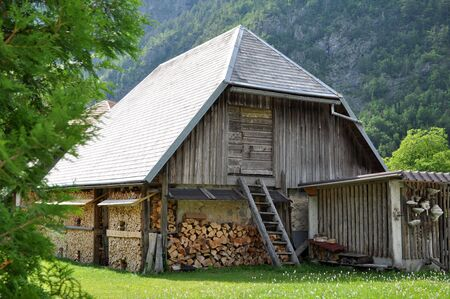 Old wooden barn with ladder and firewood. Trenta, Slovenia Stock Photo - 5142581