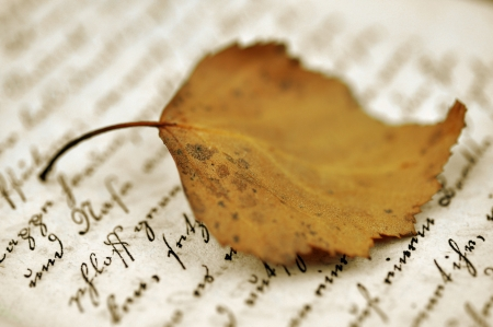 translation: Autumn leaf on an old diary Stock Photo