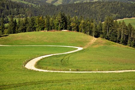 Winding road through the summer landscape photo