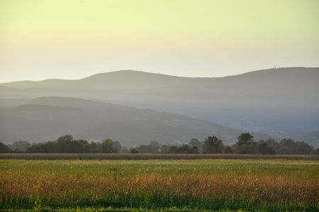 Oil seed field an hills in the evening sun photo