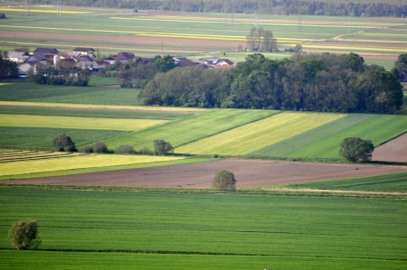 View at colorful fields. Dravsko polje, Slovenia photo