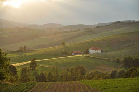 Sonnenuntergang über den sanften Hügeln