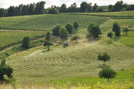 Tractores trabajando en los prados de verano  Foto de archivo - 7589042