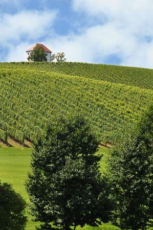 Beautiful summer farmland landscape. Åkalce, Slovenske Konjice, Slovenia Stock Photo - 7611540