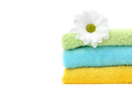 Daisy on a pile of colorful clean folded towels photo