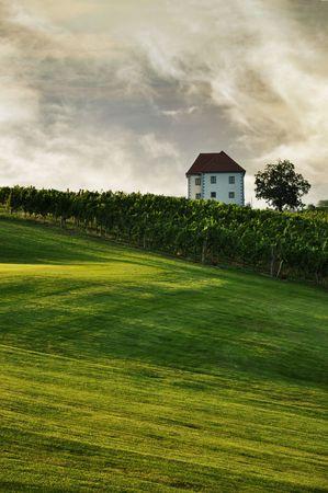 House in the summer landscape. Škalce, Slovenia  photo