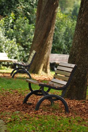 Empty sitting benches in the autumn park Stock Photo - 8015636
