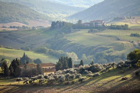 rolling landscapes: Typical Tuscan landscape in the evening sun  Stock Photo
