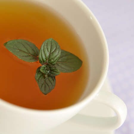 Fresh mint in a cup of tea  photo