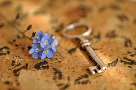 Vintage key and forget-me-nots on an old book photo
