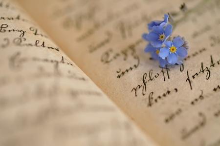 Vergissmeinnicht auf eine alte Tagebuch Lizenzfreie Bilder