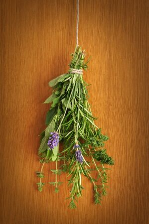 Bunch of fresh herbs, hanging on a rope and drying photo